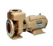Sta rite csp pool pump commercial for Sta rite pool pump motors