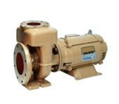 Sta-Rite CSP Pool Pump